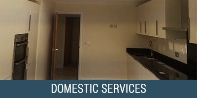 Domestic-Services